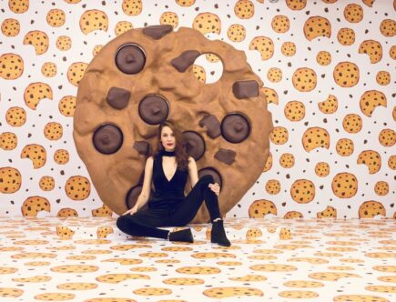 ricette biscotti fit cookies proshape fitline herbaslim